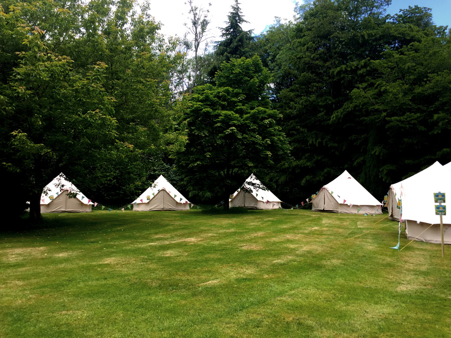 bell tents dotted around trees