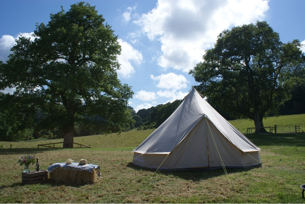 Wheatham Farm field view with a bell tent