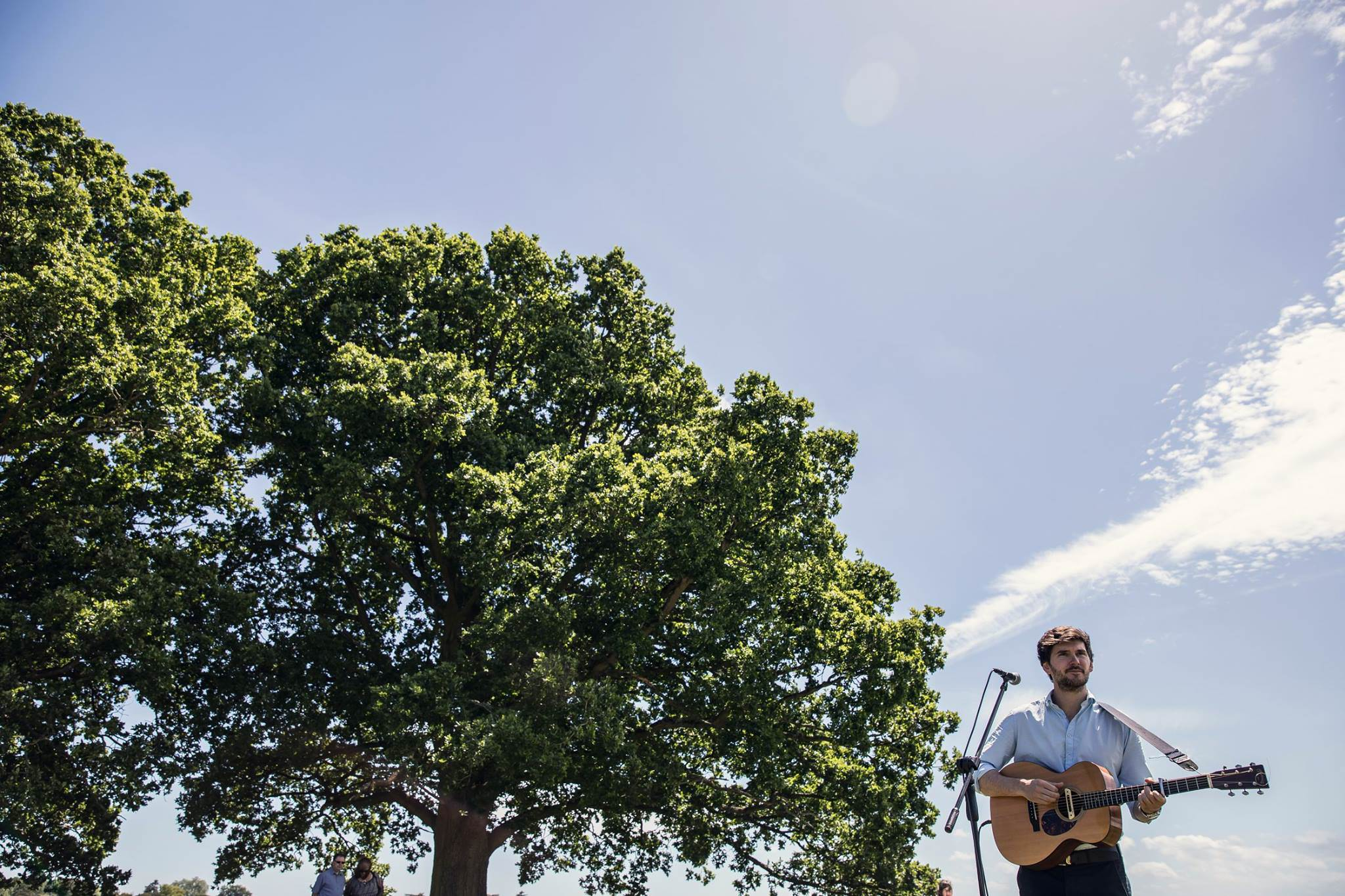 acoustic guitarist in a field on a sunny day