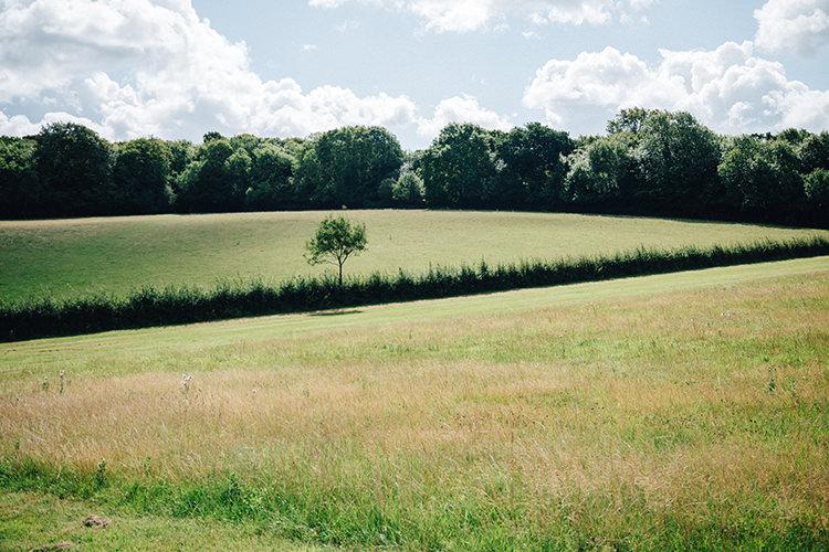 rolling fields views at Fiesta Fields in Surrey